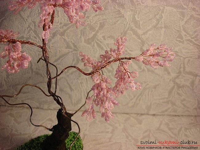 How to weave sakura from beads, detailed master classes with step-by-step photo and description .. Photo # 21