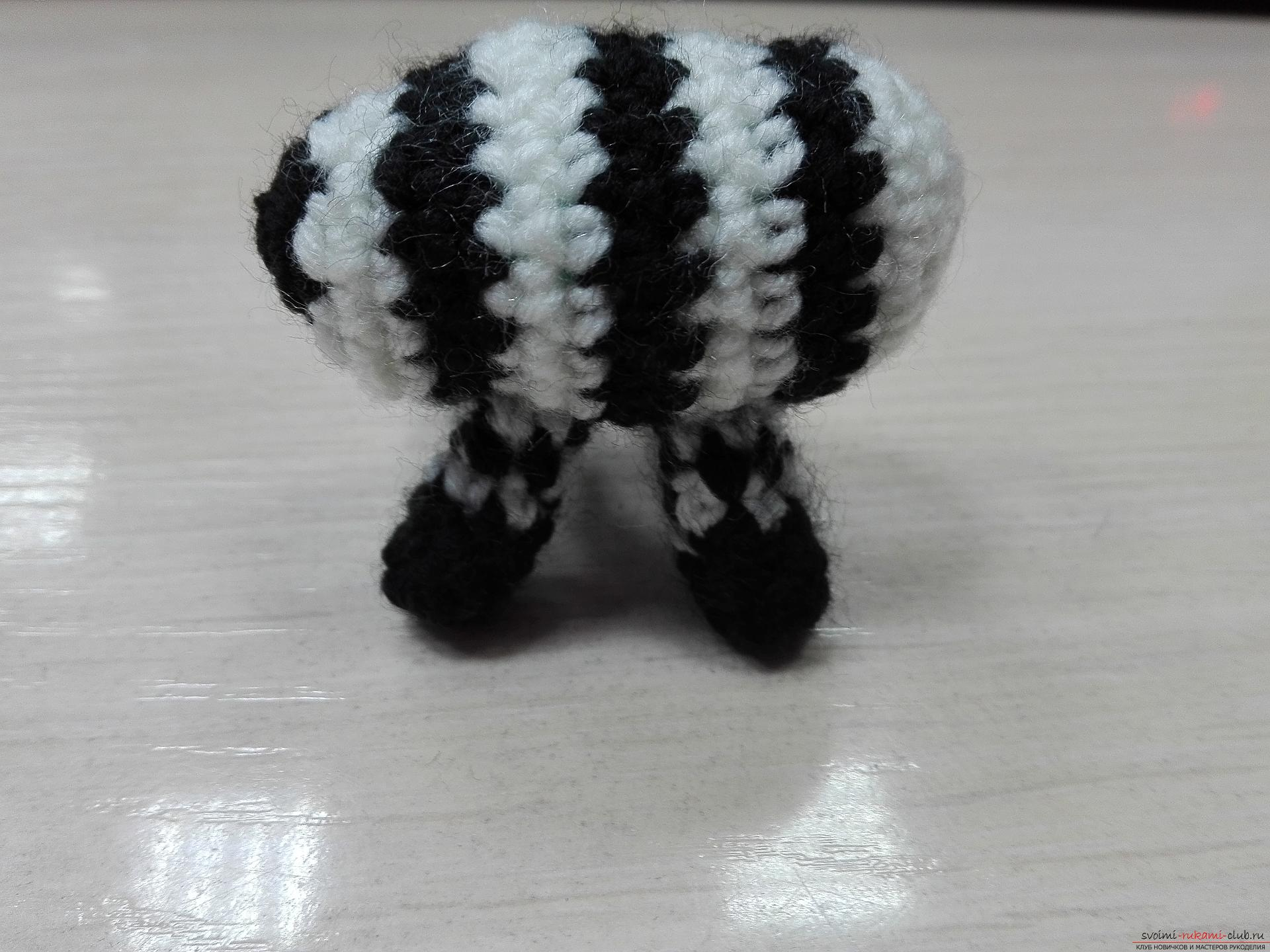 This master class toy itself teach how to tie a zebra crochet. Photo number 16