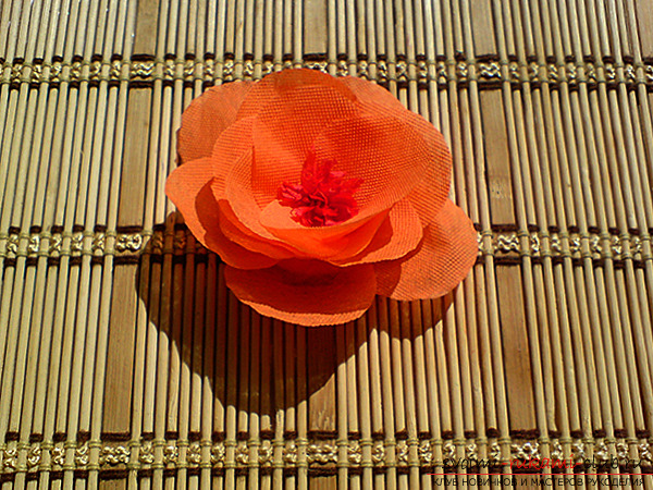 Flowers from paper with their own hands. Photo №4
