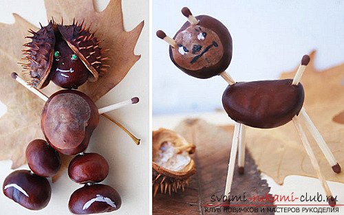 Here's what you can do from chestnuts .. Picture # 3