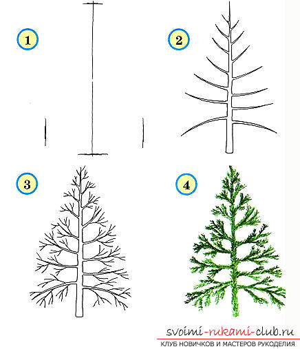 Drawing a tree in stages for beginners. Photo №6
