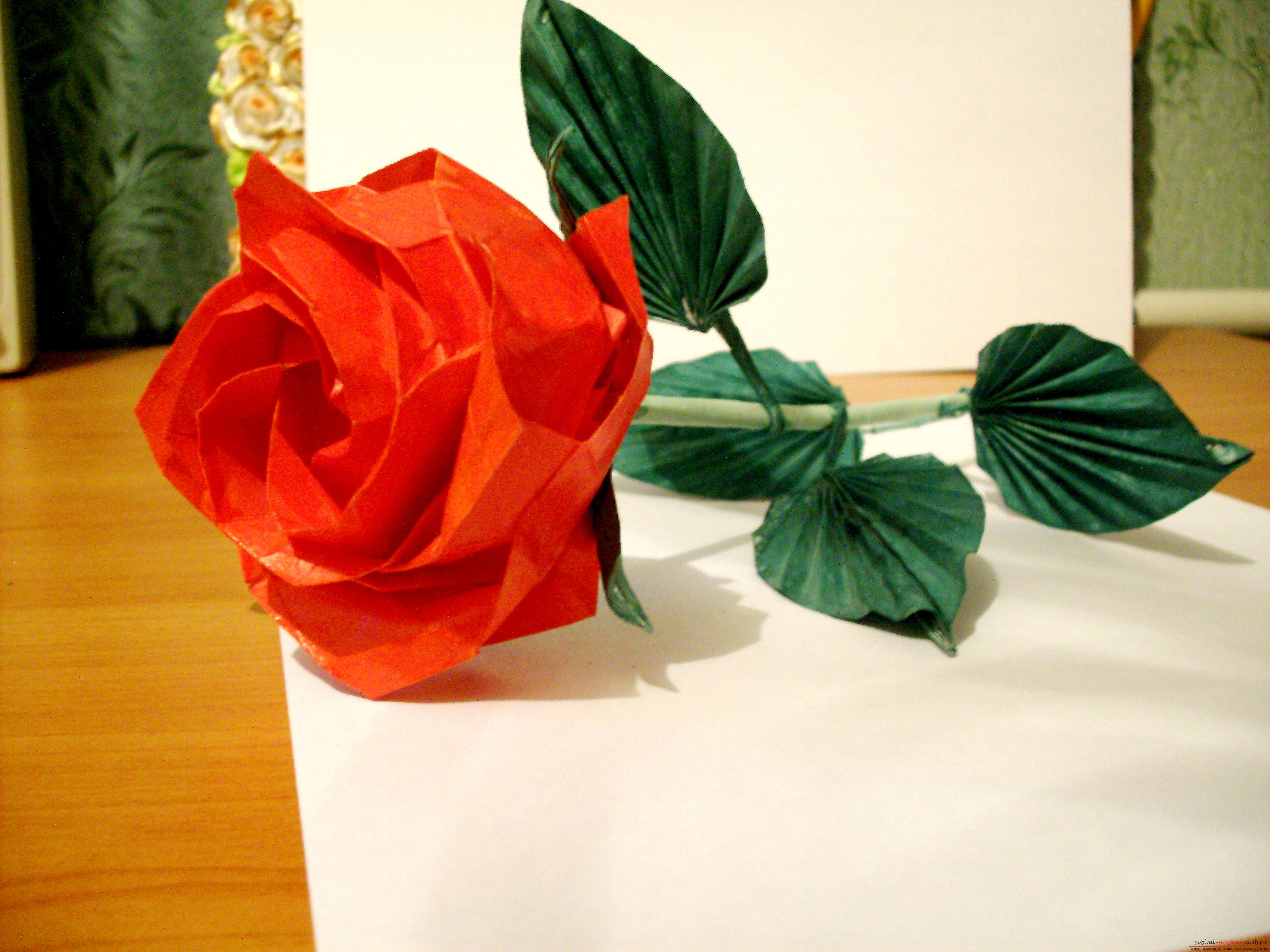 Tips for creating origami roses with their own hands. Photos for work .. Picture №1