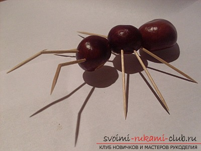 Here's what you can do from chestnuts .. Photo # 16