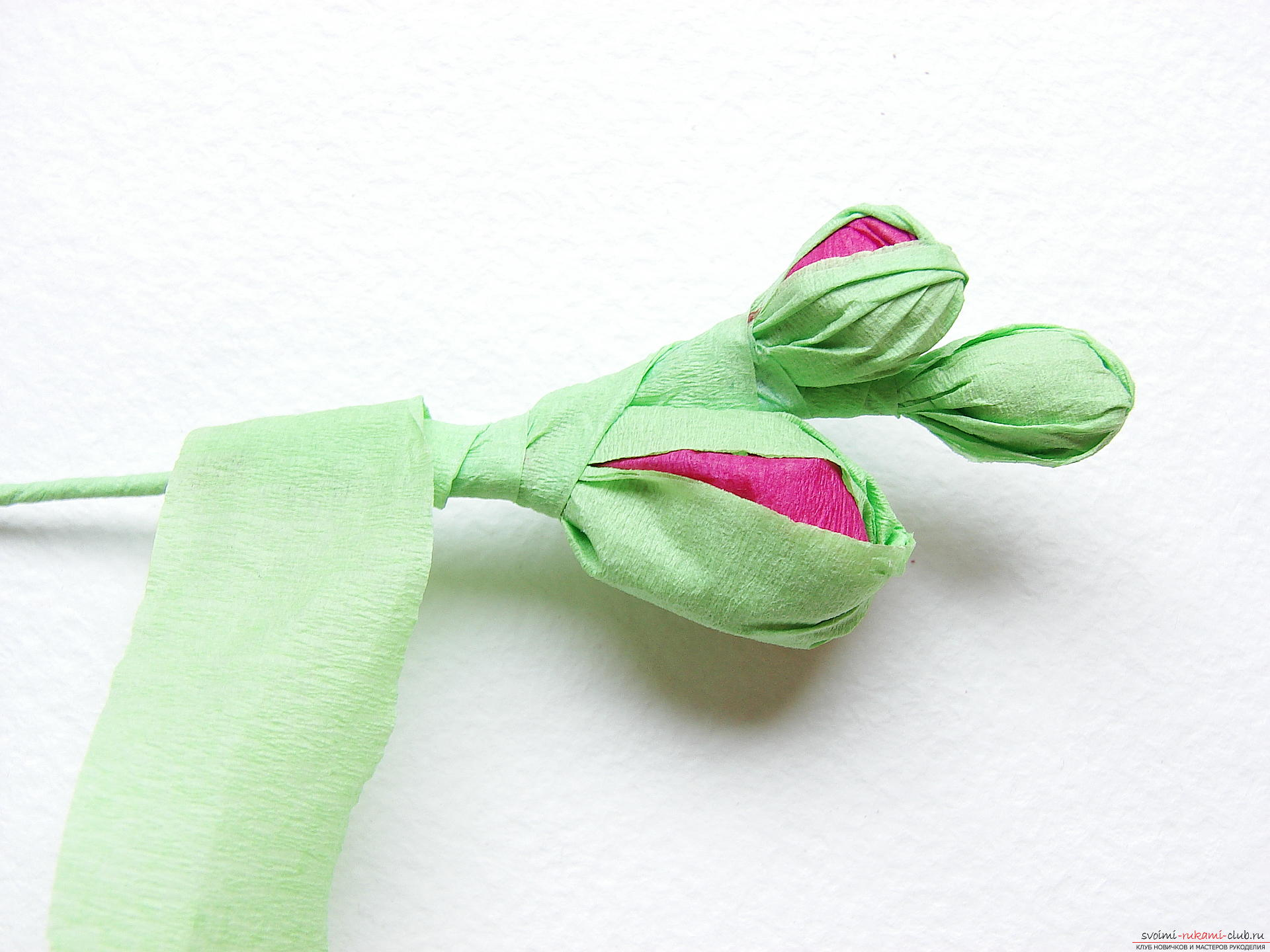 This master class will teach you how to make gladioli flowers from paper with your hands .. Photo # 24