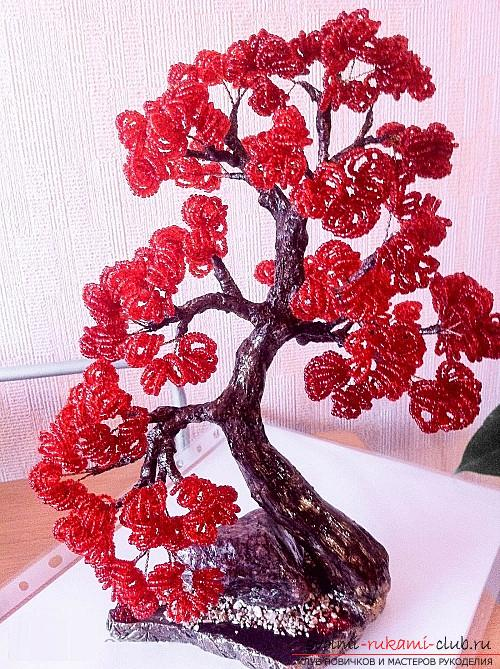 Free detailed lessons on weaving of beads bonsai in different shades. Photo №1