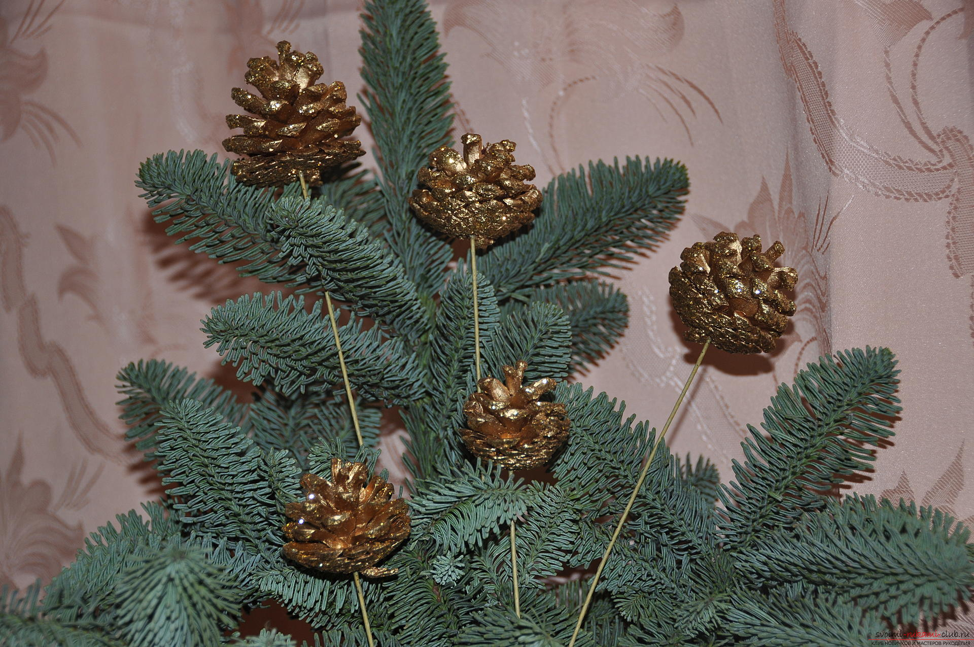 A master class with a photo will teach you how to create New Year's compositions from a live spruce tree with your own hands. Photo # 2