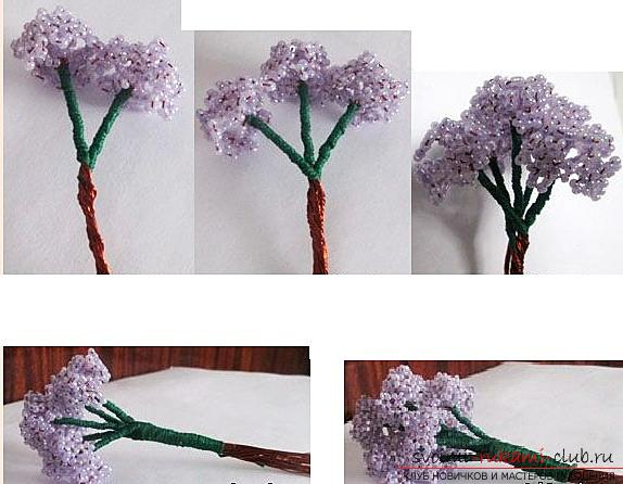 How to make a lilac branch of beads, step-by-step photos and a description of several weaving techniques for beaded floristics. Photo Number 14