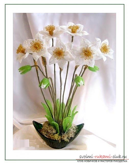 How to weave a flower of narcissus from beads, two variants in different techniques of weaving, diagrams, photos and description. Photo №1