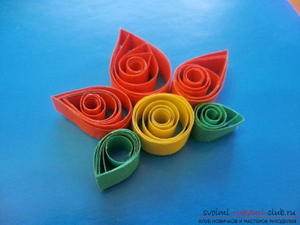 Quilling technique for beginners, basics of quilling, rules and advice for beginners, description of basic schemes, tools required for work, tips, recommendations and photos .. Photo # 26