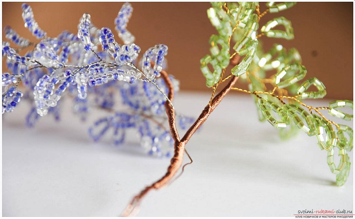 Jak wyplatać wisterię z koralików, zdjęcia krok po kroku i opis wikliny japońskiej i chińskiej wisterii w technice pętli, wskazówki na temat ozdabiania rzemiosł. Zdjęcie nr 16