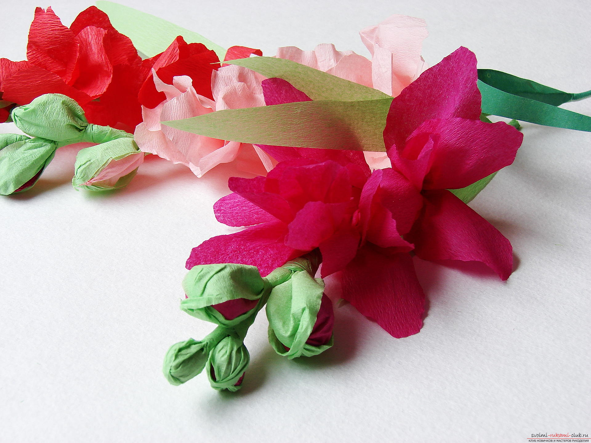 This master class will teach you how to make gladioli flowers from paper with your own hands. Photo # 31