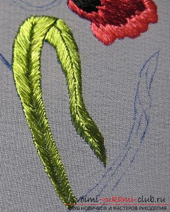Embroidery with Chinese poppy on the scheme. Photo Number 14