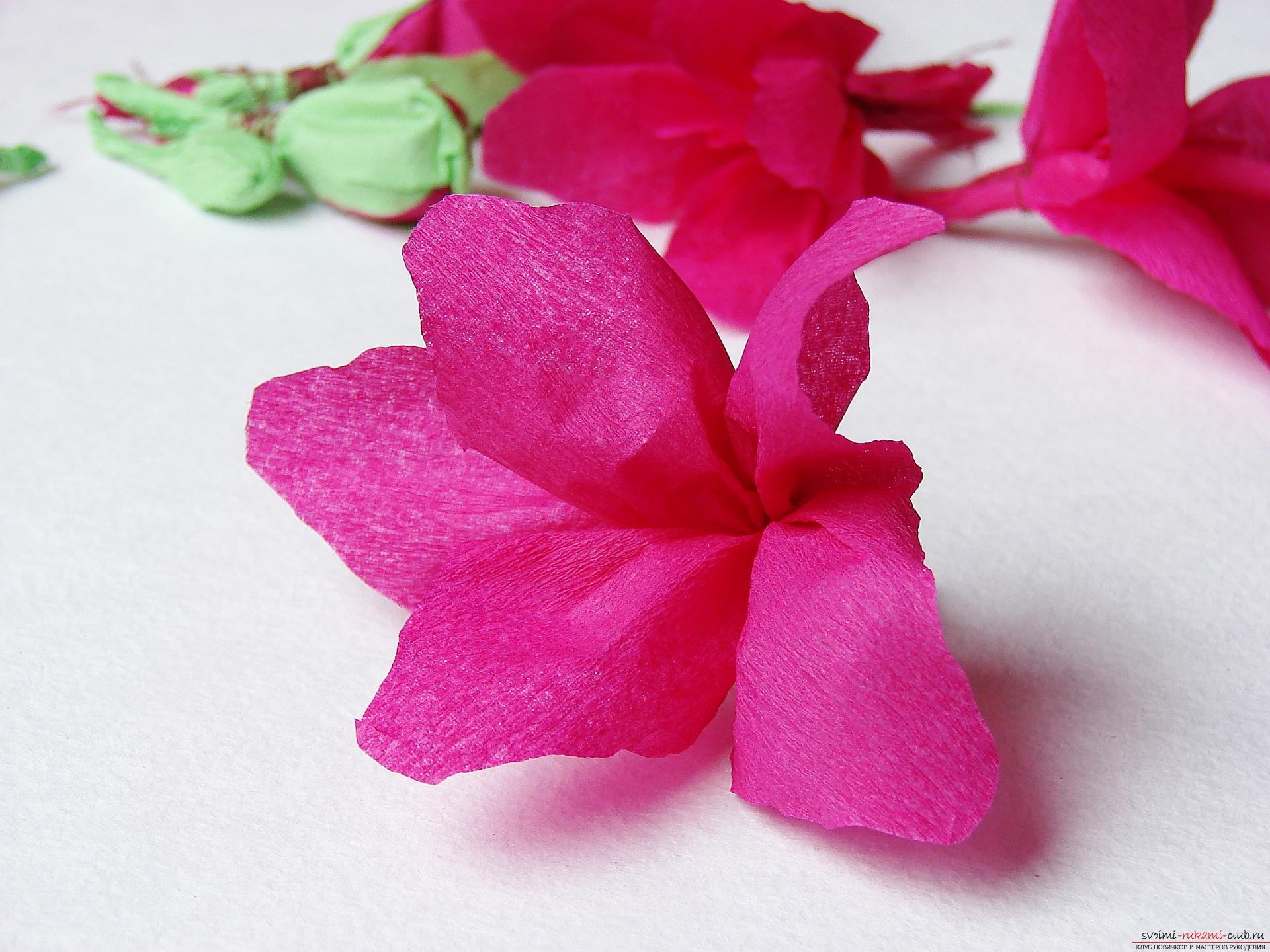 This master class will teach you how to make gladioli flowers from paper by yourself. Photo # 21