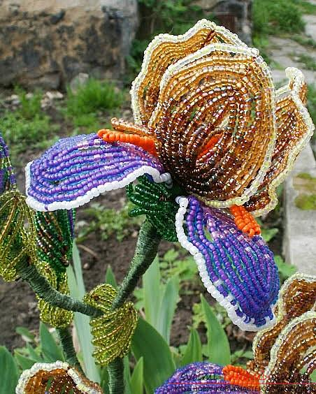 How to weave multicolored iris from beads in French technique, description and step-by-step photos. Photo №6