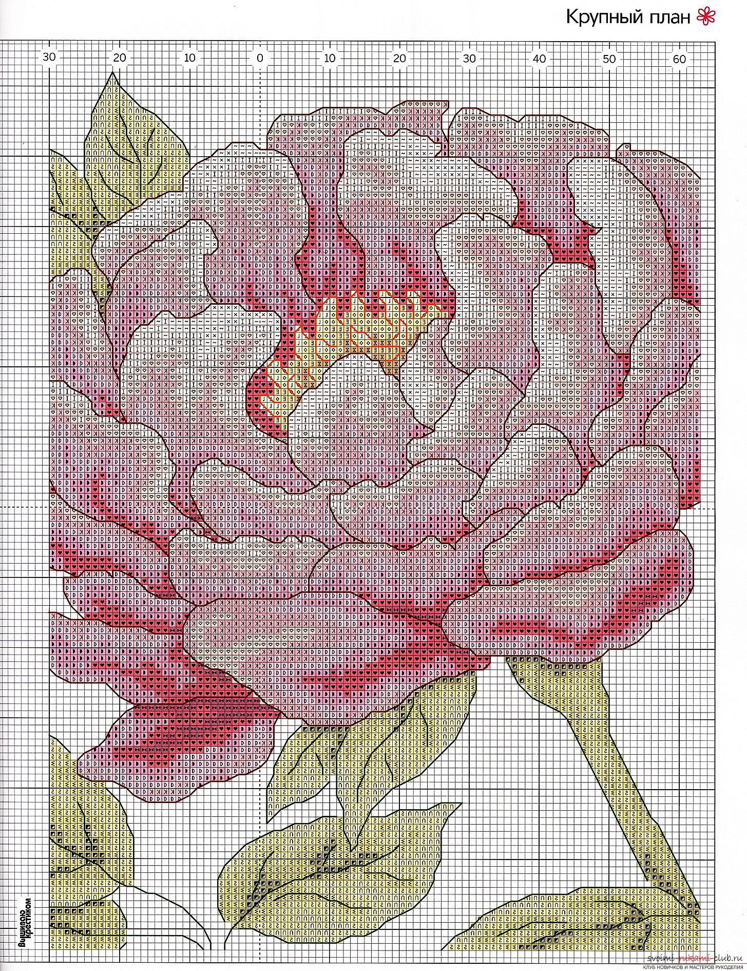 We embroider a cross of peonies: a detailed master class with a description and a photo. Picture №3