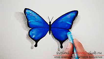 Master class on drawing a butterfly pastel with your own hands. Picture №10