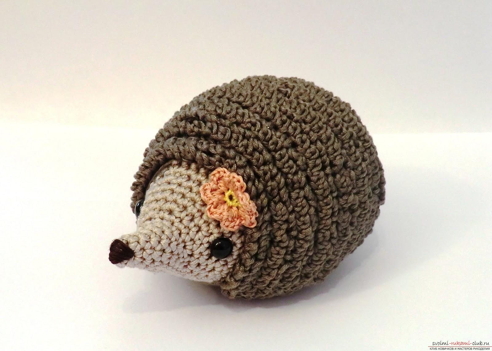 We learn to crochet the hedgehog with the hands of amigurumi with detailed instructions and photos .. Photo # 2