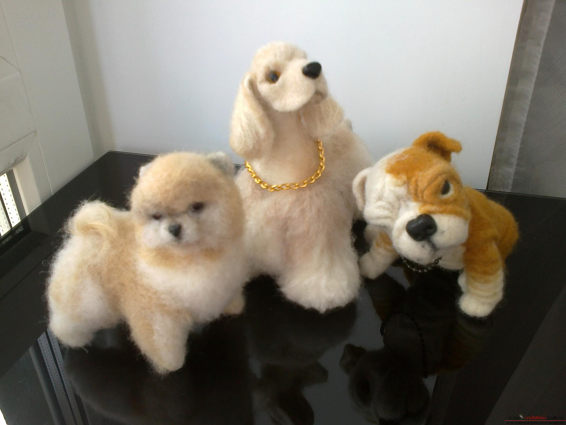 Description of toys in the form of puppies of popular breeds, made in the technique of dry felting. Picture №3