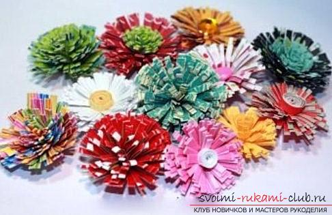 How to make asters for the house with their own hands? Quilling of a flower and a master class. Photo №1