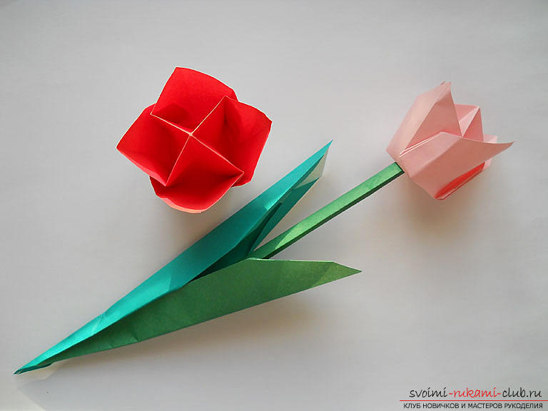 How to make a tulip according to the origami scheme with your own hands - origami for children and adults. Photo # 2