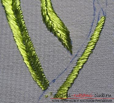 Embroidery with Chinese poppy on the scheme. Photo number 16