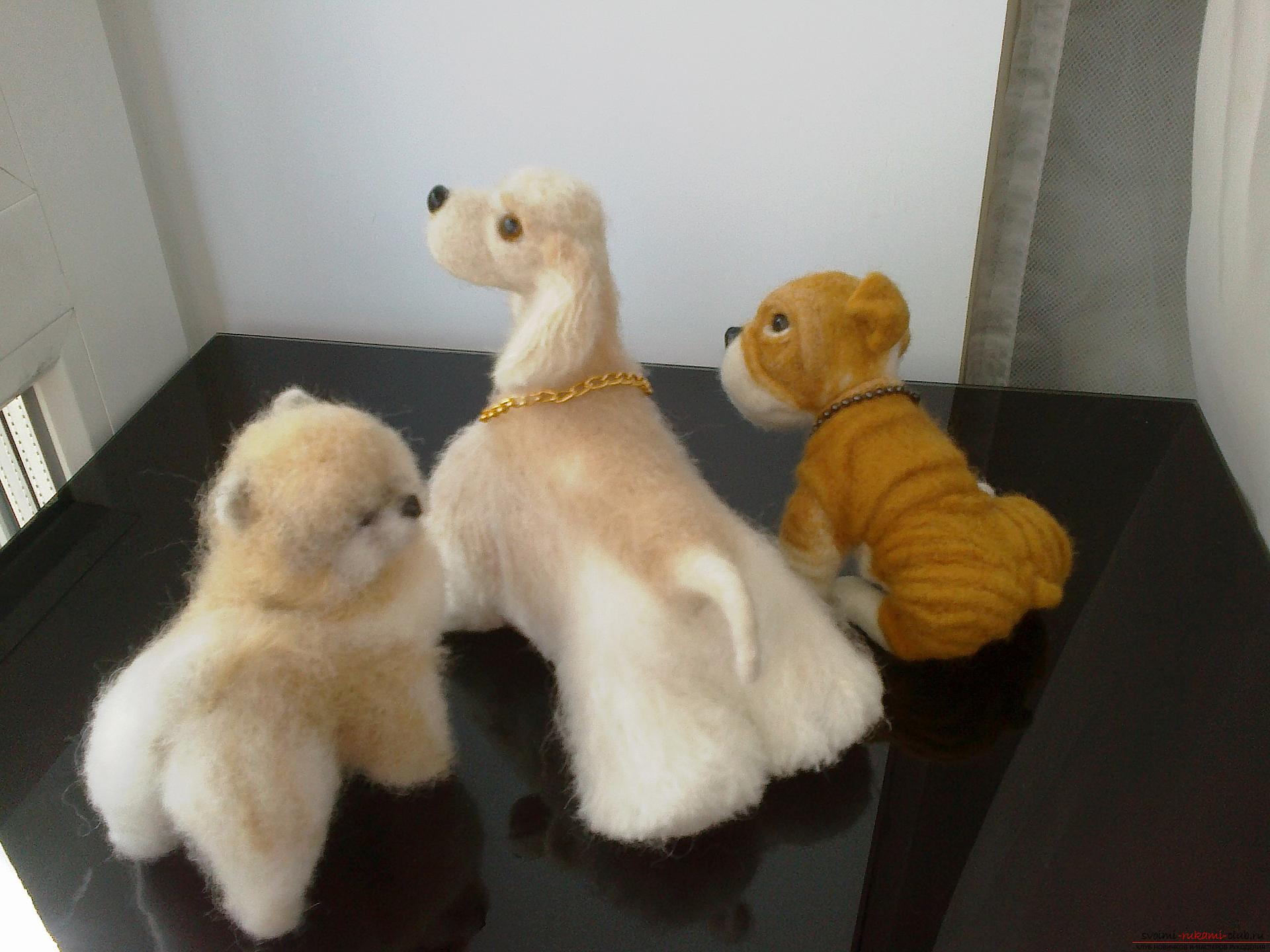 Description of toys in the form of puppies of popular breeds, made in the technique of dry felting. Photo №5