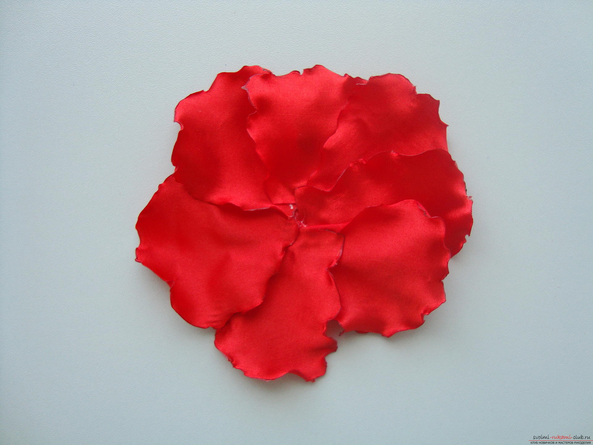 Beautiful scarlet poppies can be made from cloth in Kansas technique .. Photo # 10
