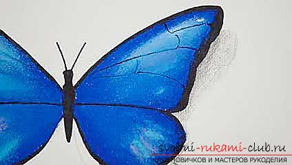 Master class on drawing a butterfly pastel with your own hands. Photo Number 9