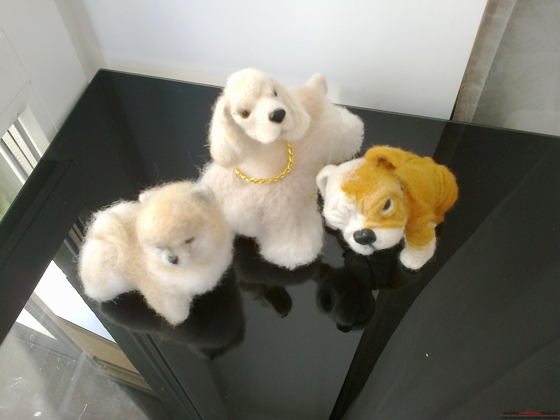 Description of toys in the form of puppies of popular breeds, made in the technique of dry felting. Photo №4
