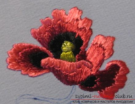 Embroidery with Chinese poppy on the scheme. Photo №13