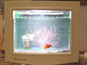 Aquarium from the old monitor.