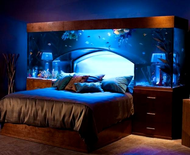 aquarium in the bedroom at the head of the bed
