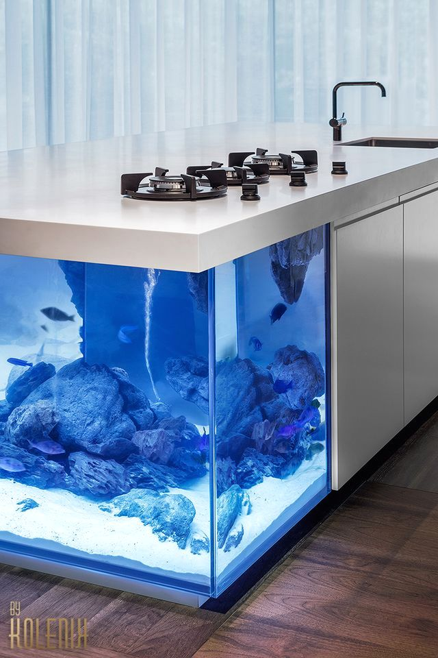 kitchen island in the style of eco-chic with a large built-in aquarium