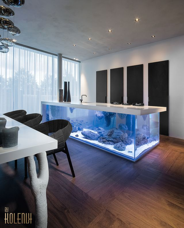 kitchen with an aquarium from Kolenik