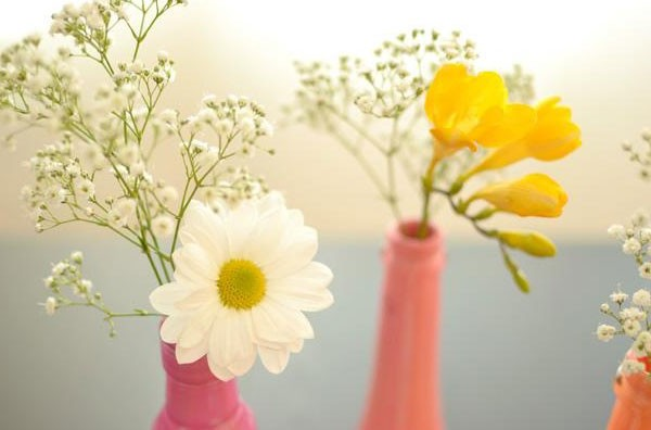 Vases from bottles can be decorated with flowers