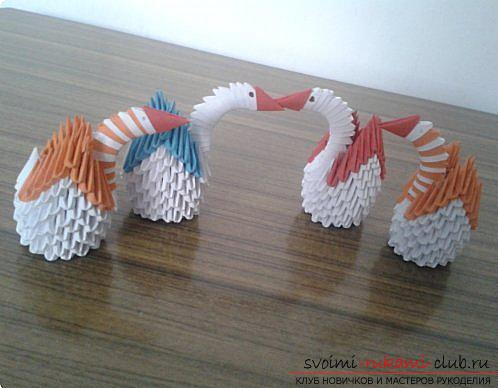 How to make a small swan out of modules. Photo Number 19