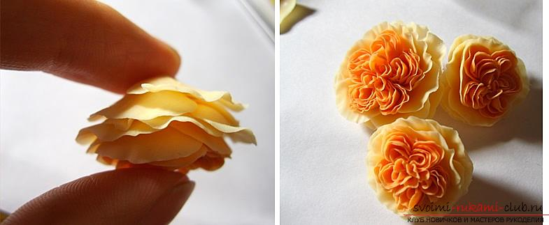 How to mold a rose from polymer clay, a master class with a detailed description and a photo .. Photo # 18