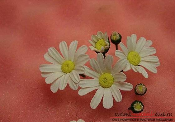 We make a daisy flower with the help of polymer clay - a master class for a beginner. Photo Number 9