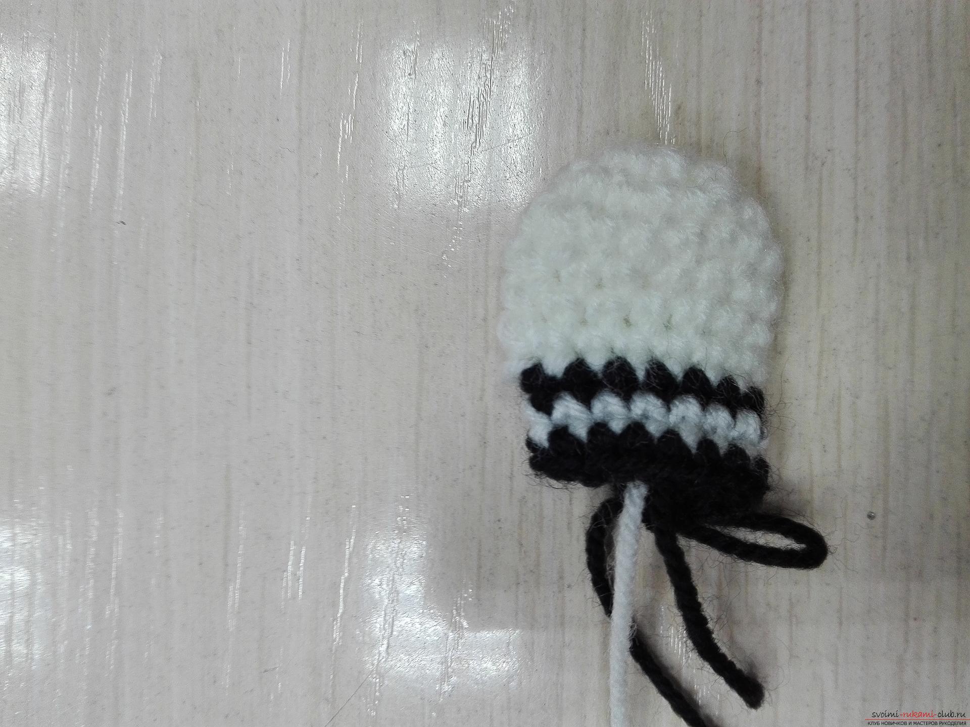 Тази майсторска играчка клас сама учи как да вратовръзка зебра плетене на една кука. Снимка номер 22