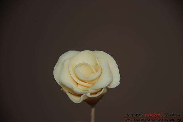 Free master classes on modeling flowers and figurines from mastic, photo and description of work .. Photo # 11