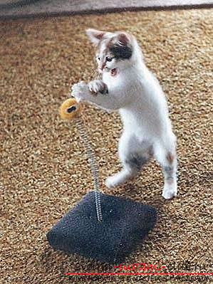 How to make a toy for a cat yourself: tips and types of toys for free .. Picture №3