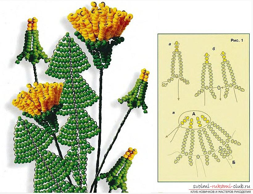 How to weave buds, flowers and leaves of dandelion, schemes and photos of beads. Photo # 2