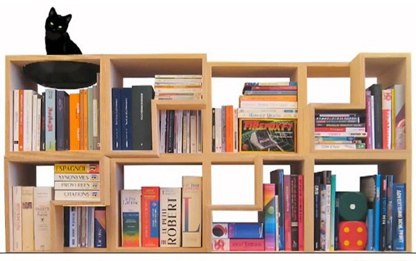 book shelving Cat Library