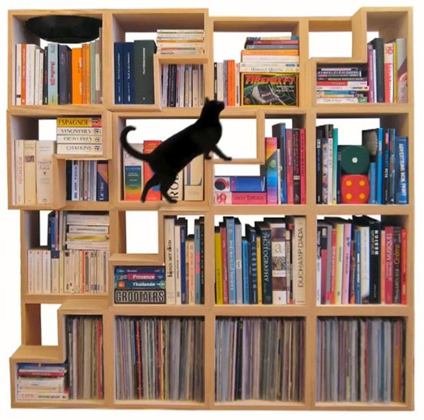 bookcase Cat Library