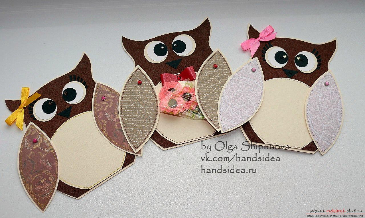 Charming owls. Photo # 2
