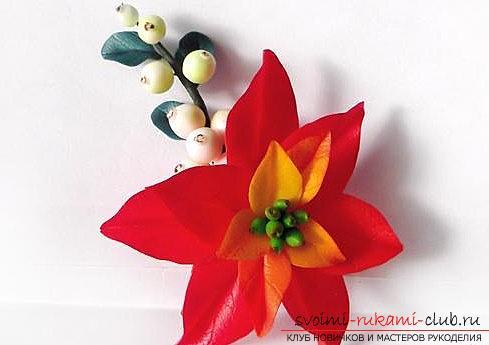 The flower of poinsettia and snow-berry berries is a lesson in polymer clay and a master class. Photo №1