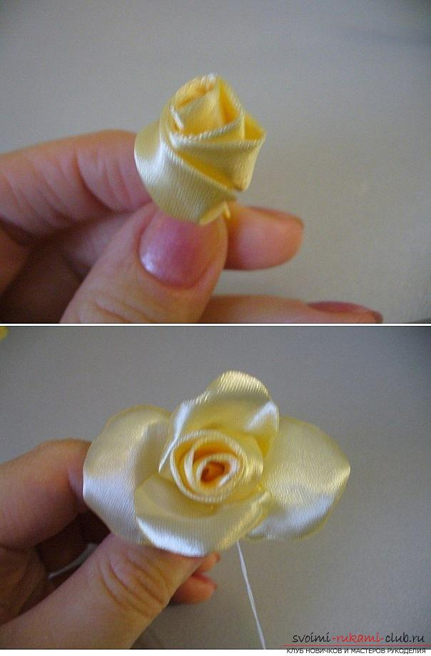 How to make roses from a ribbon with your own hands, step-by-step photos and instructions for creating a flower, seven variants of roses from a ribbon in the form of buds and blossoming flowers. Photo №29