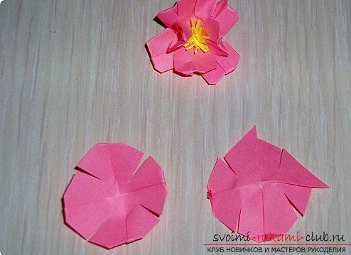 Sakura flowers in origami technique. Photo №6