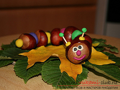 Here's what you can do from chestnuts .. Photo # 5
