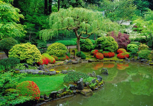 decorative Japanese pond